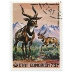 Comores N° 0174 N*