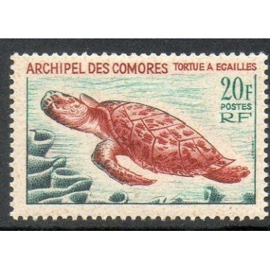 Comores N ° 037 N *